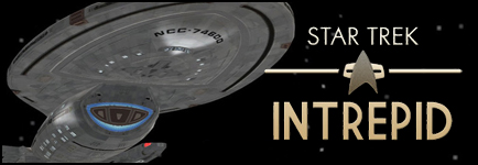 Star Trek Intrepid Banner